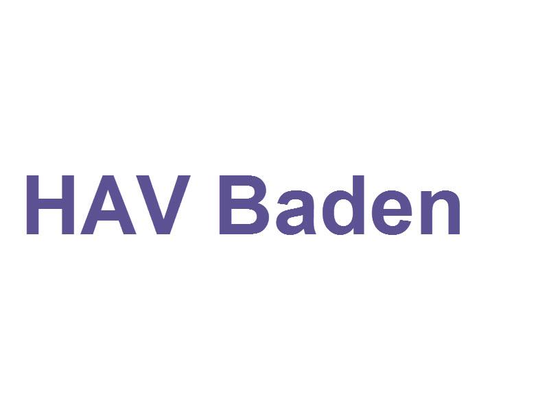 Verein Grundversorger der Region Baden