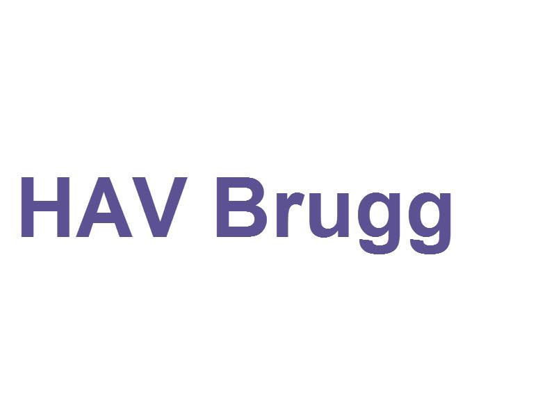 Verein Hausärztinnen und Hausärzte der Region Brugg